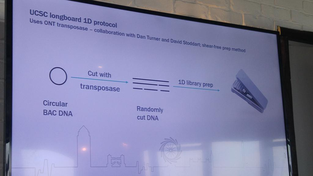 Longboard protocol from #ucsc at #Nanoporeconf https://t.co/bCzDAKwXCD