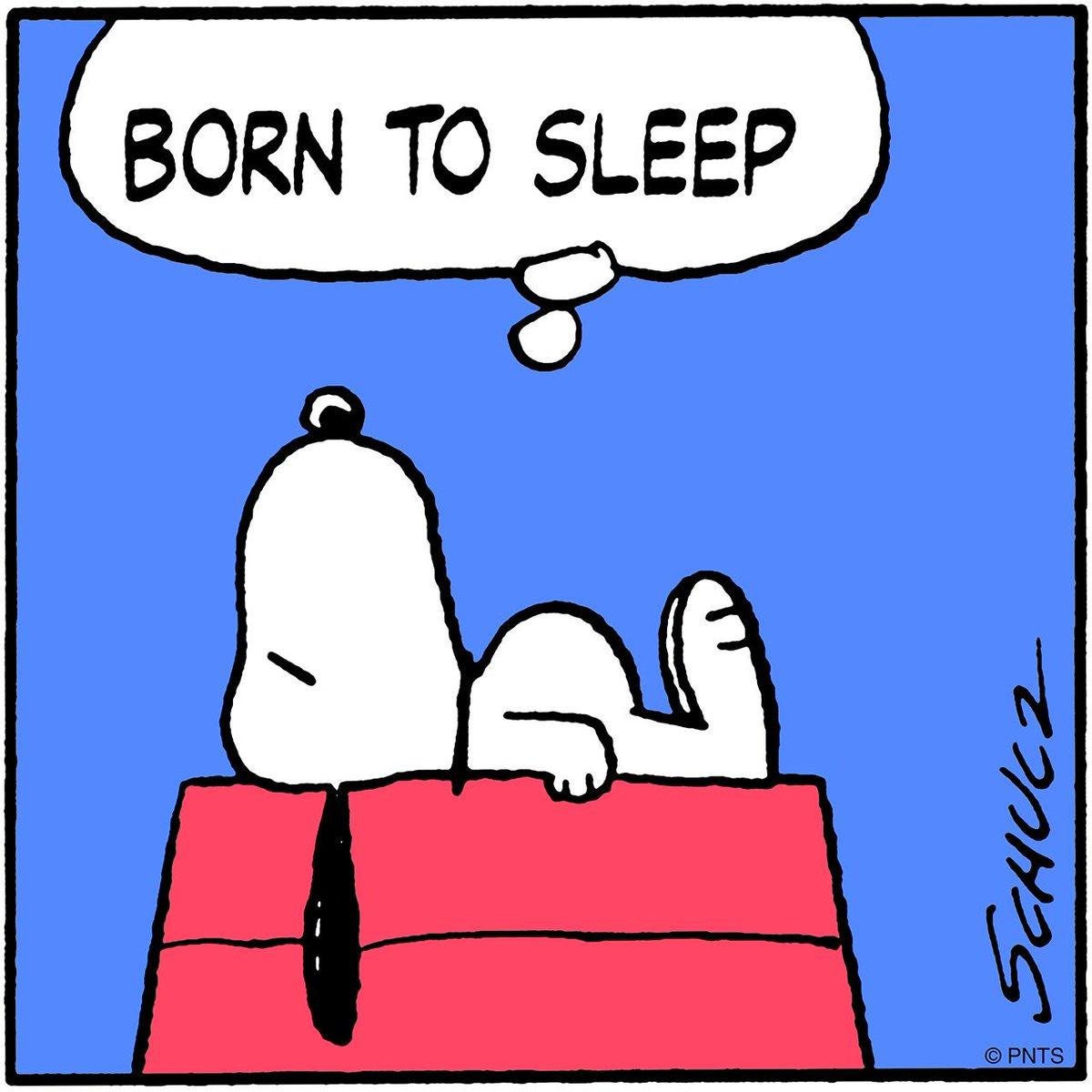 peanuts on twitter born to sleep