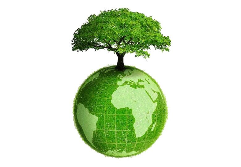 rush limbaugh is a