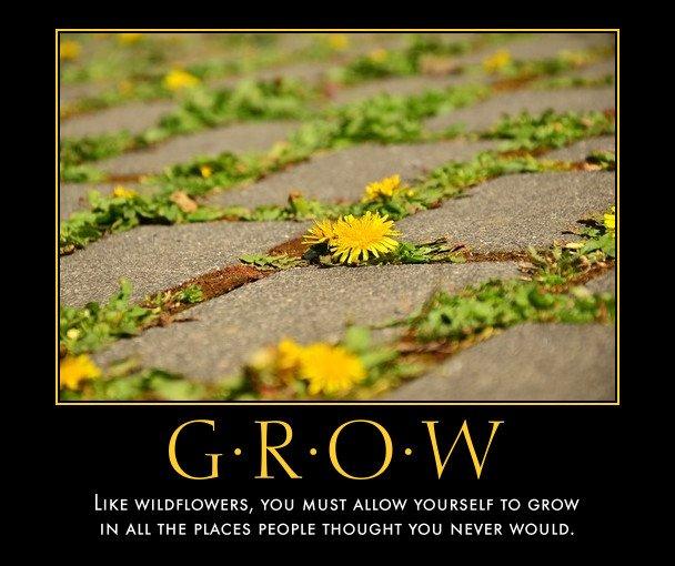 I made another version of the wildflowers https://t.co/WDeFwxG9ry #GrowthMindset #MindsetPlay thanks @goalsettingmom https://t.co/YTMKasD8tJ