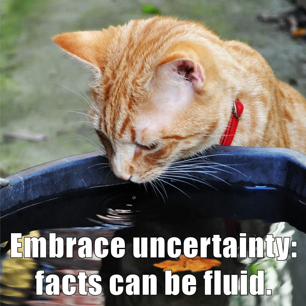 Today's #growthmindset cat embraces uncertainty: facts can be fluid!  Details: https://t.co/aYOJ4Eicz3 #MindsetPlay https://t.co/UQam8rvSxm