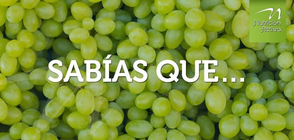 Las uvas ayudan a combatir la depresión gracias a su contenido de magnesio y fósforo. #DietaActiva https://t.co/x50KZPvQjK