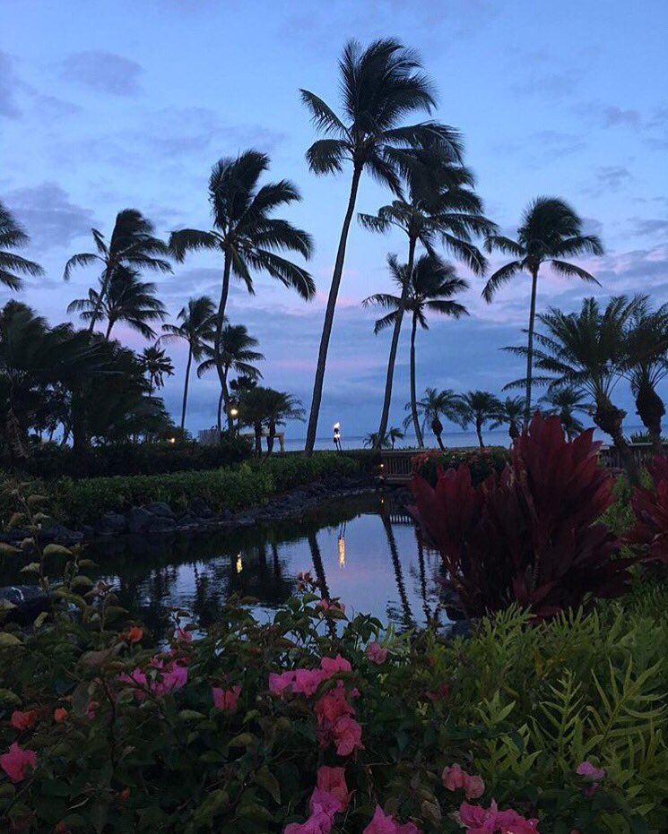 With sunsets like this, it's no surprise that Kauai's color is purple.