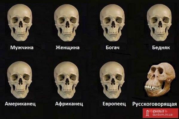 """В оккупированном Севастополе хотят присвоить Путину звание """"почетного гражданина"""" - Цензор.НЕТ 7861"""
