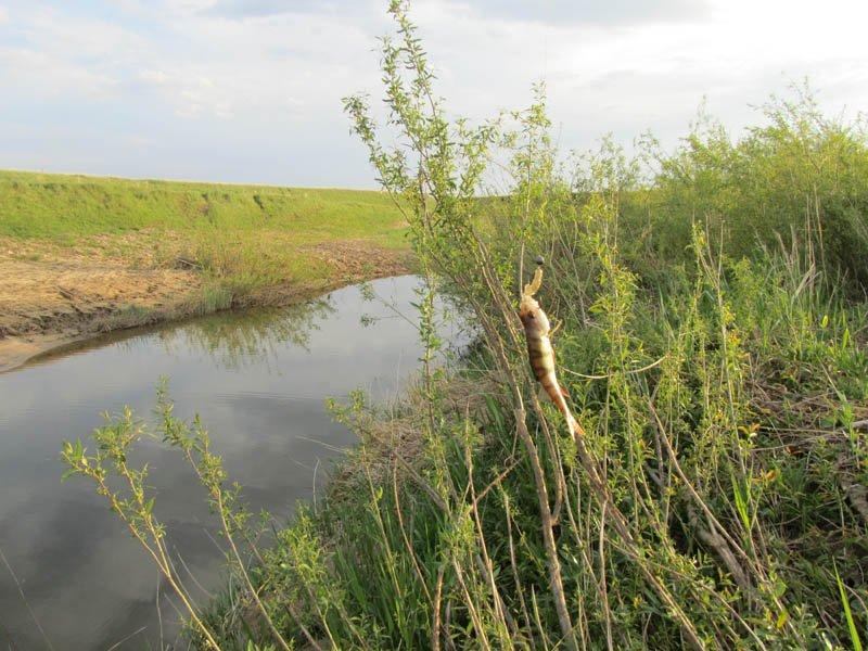 Отчет о рыбалке на горьковском водохранилище 2016