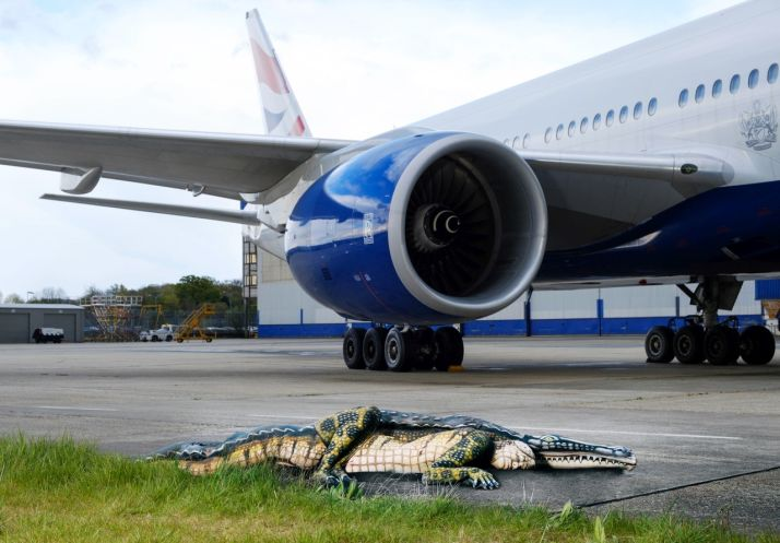 To promote Florida travel, British Airways painted people as gators and put them on a runway (w/video)