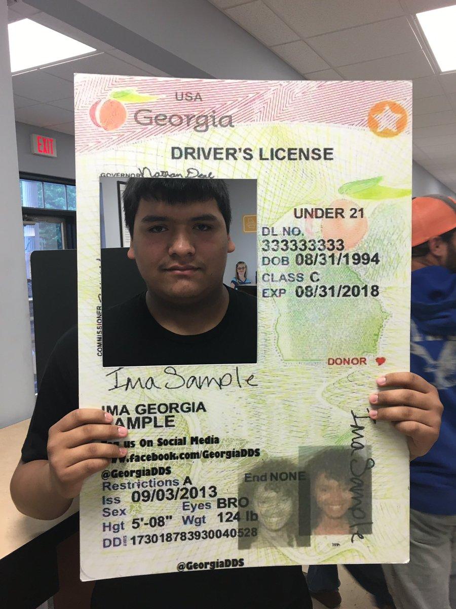 ga dds drivers license status