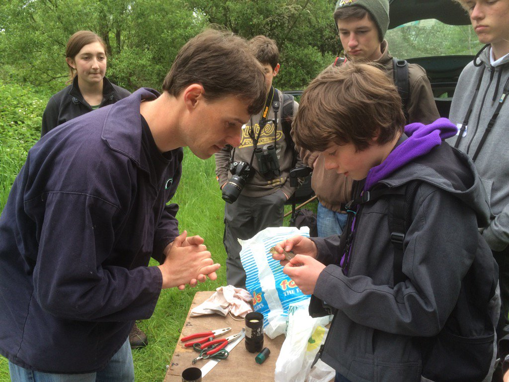 Here are some of our brilliant #YoungBirders out #BirdRinging with @lee00barber at #birdcamp16 https://t.co/aJqPBR6G5a