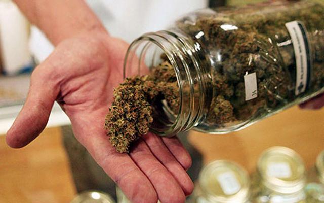 Marijuana Careers for Vets