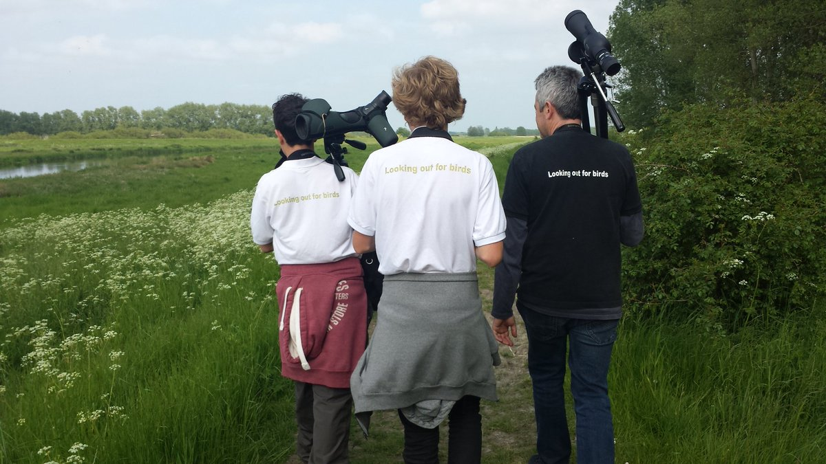 Some top @BirdTrack recording from @_BTO @_ieuan @Ben_Moyes16 @TobyWarbler at Lakenheath #BTOBirdCamp. More today! https://t.co/aPA2CFY5fP