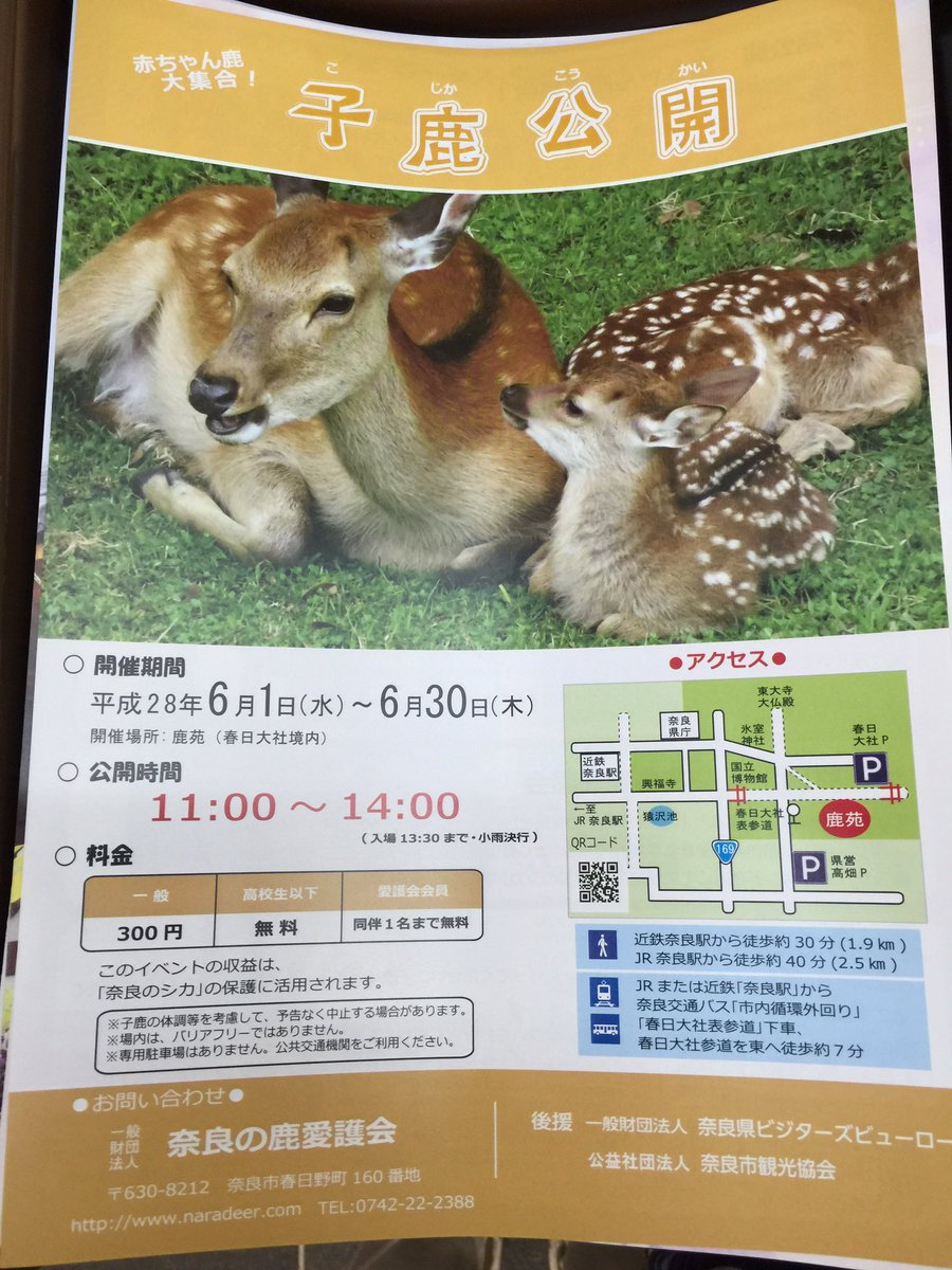 来週、1日から  赤ちゃん鹿  大集合!  子鹿公開はじまりますね〜 https://t.co/KgrFHsnOQl