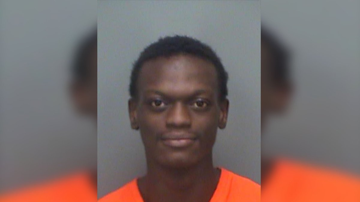 Armed robber apprehended in Pinellas County