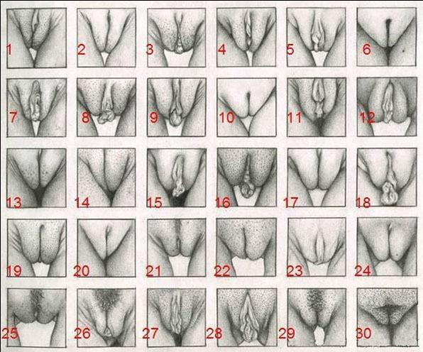 Tipos de orgasmos femeninos y cmo alcanzarlos - VIX