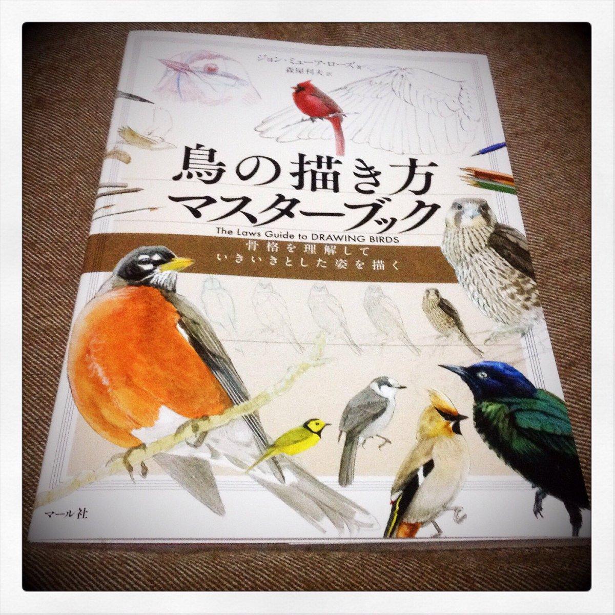 鳥の構造とかわかる資料ないかなーとずっと思ってたところでこの本を買ってらっしゃるのを拝見したので迷わず即買い。  嘴から脚までどういう構造かとか、羽毛の生えてる方向とかかなり詳しくてすばらしい。 https://t.co/7CETG4IYfe