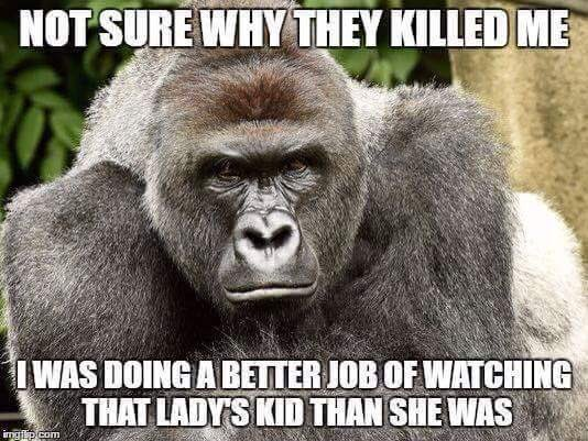 #Harambe #justiceforharambe  Humans are the most destructive force on the planet