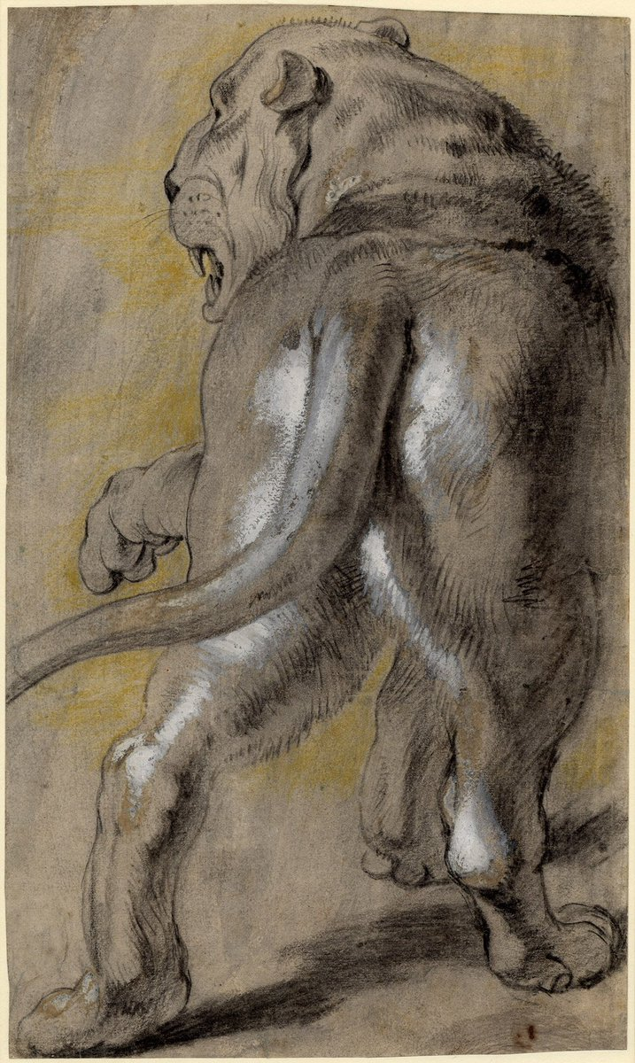 Rubens Figure Drawings Paul Rubens: Latest ne...