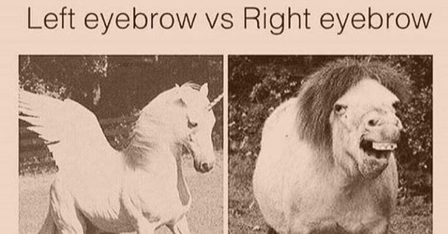 20 beauty memes that will make you laugh out loud... https://t.co/qZ47YvV14Z https://t.co/Tl5anltNnO