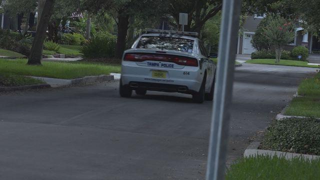 South Tampa residents concerned after wave of violent crime