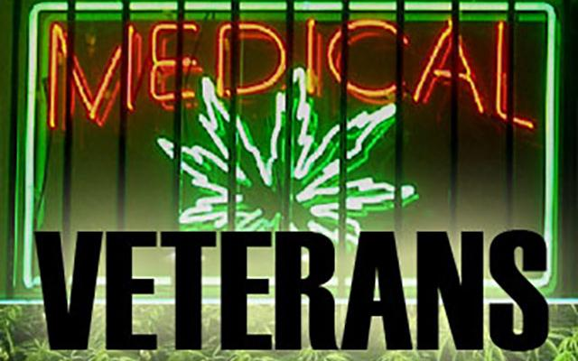 Texas Vets Gather at State Capitol on Veterans Day to Push for Medical Pot