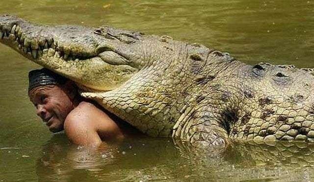 Image result for Akatekyi Crocodile Pond