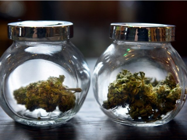 Sales skyrocket for New Mexico's medical marijuana industry