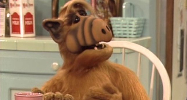 Fallece el actor que dio vida a #Alf, Mihaly Meszaros a los 76 años https://t.co/c5OmyCN3Zi https://t.co/GyEWz6ZsSn