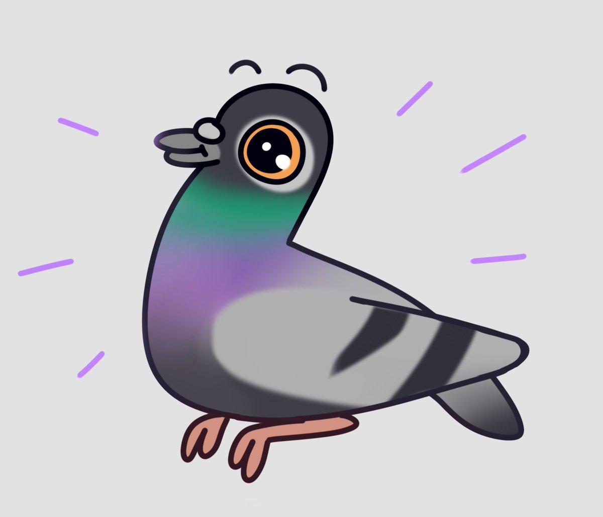 Wren On Twitter Everyone Draw Pigeons