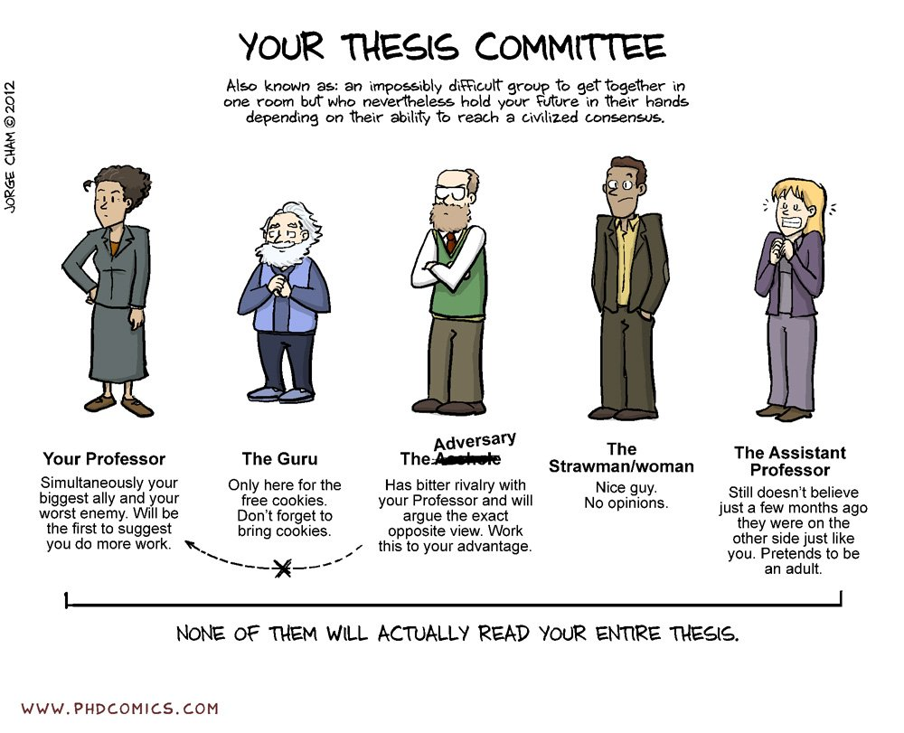 thesis developer vs personal