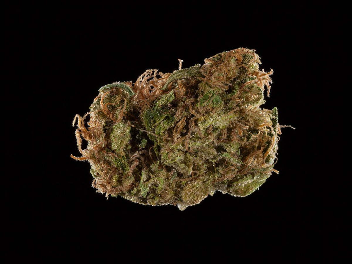 2016 Michigan Medical Cannabis Cup: Top 10 Sativa Flowers