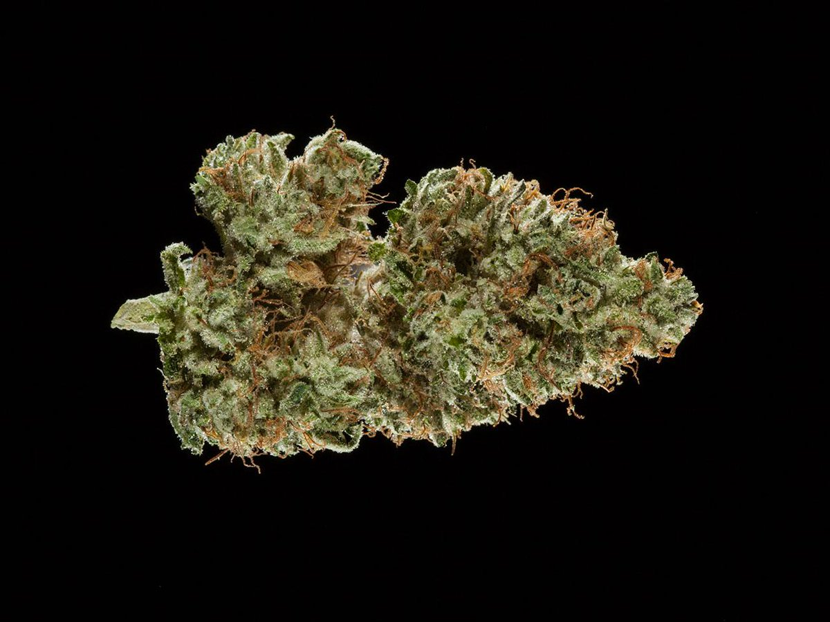 2016 Michigan Medical Cannabis Cup: Top 10 Indica Flowers