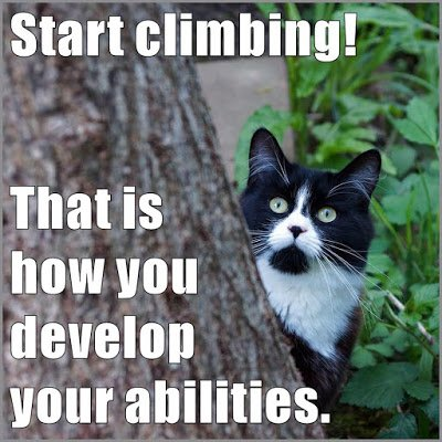 new #growthmindset cat ready to GO: Start climbing! That is how you develop your abilities https://t.co/u9zV31WWh5 https://t.co/uCqWQ5YXAo