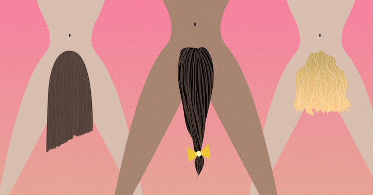 Pussy wigs