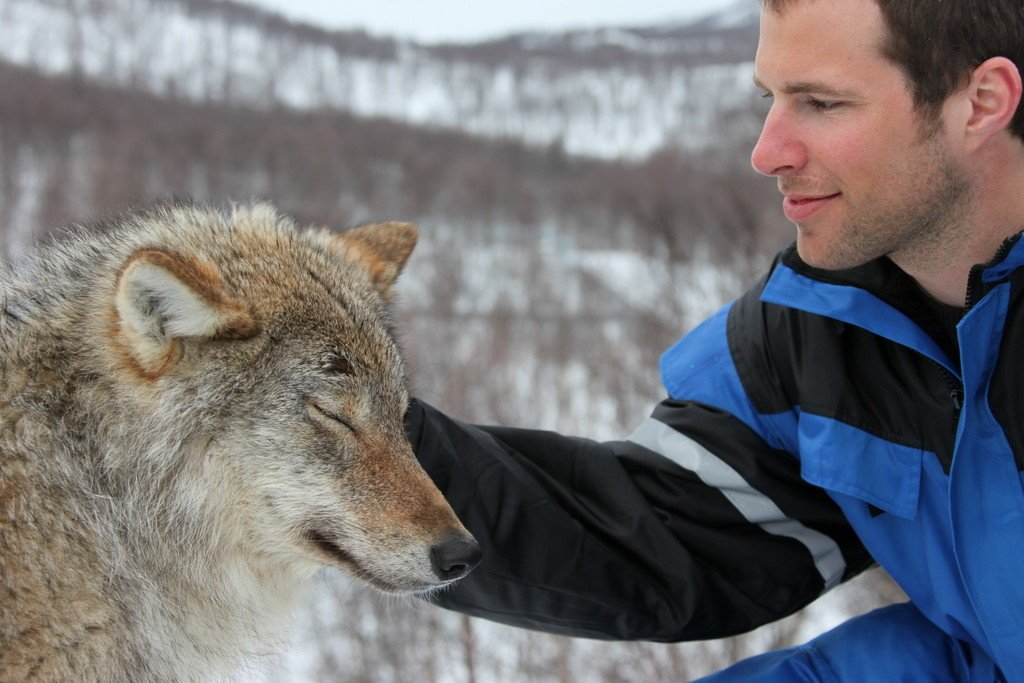 Kissing wolves in Norway? https://t.co/MTaOV9O682 @VisitnorwayUSA Photo:  @Northern_Norway #Travel #VisitNorway https://t.co/OqtAADjcF5