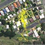 これが猫の行動力・・・GPSを付けた猫の行動範囲が凄い!!