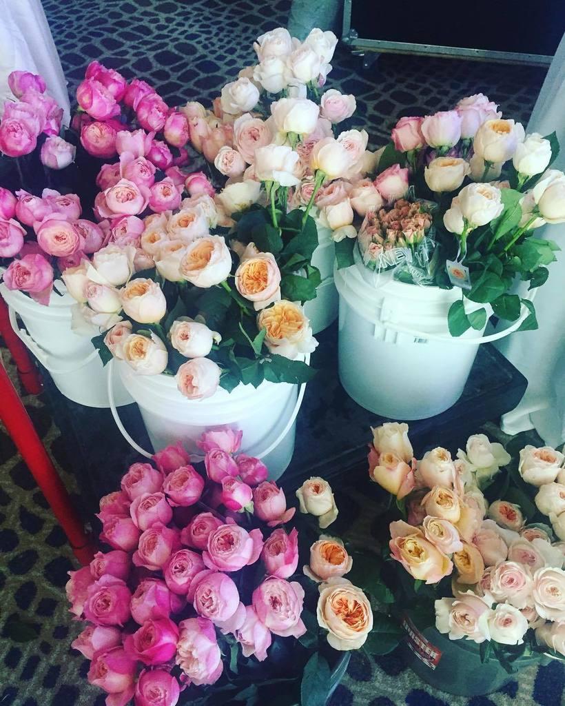 Sandy silvera on twitter my office today a very beautiful sandy silvera on twitter my office today a very beautiful flowers for a very special girl sandysilveraevents davidaustinroses dav izmirmasajfo