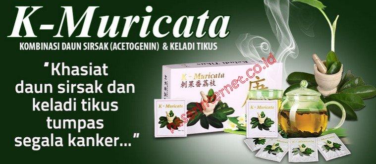 Image result for k muricata