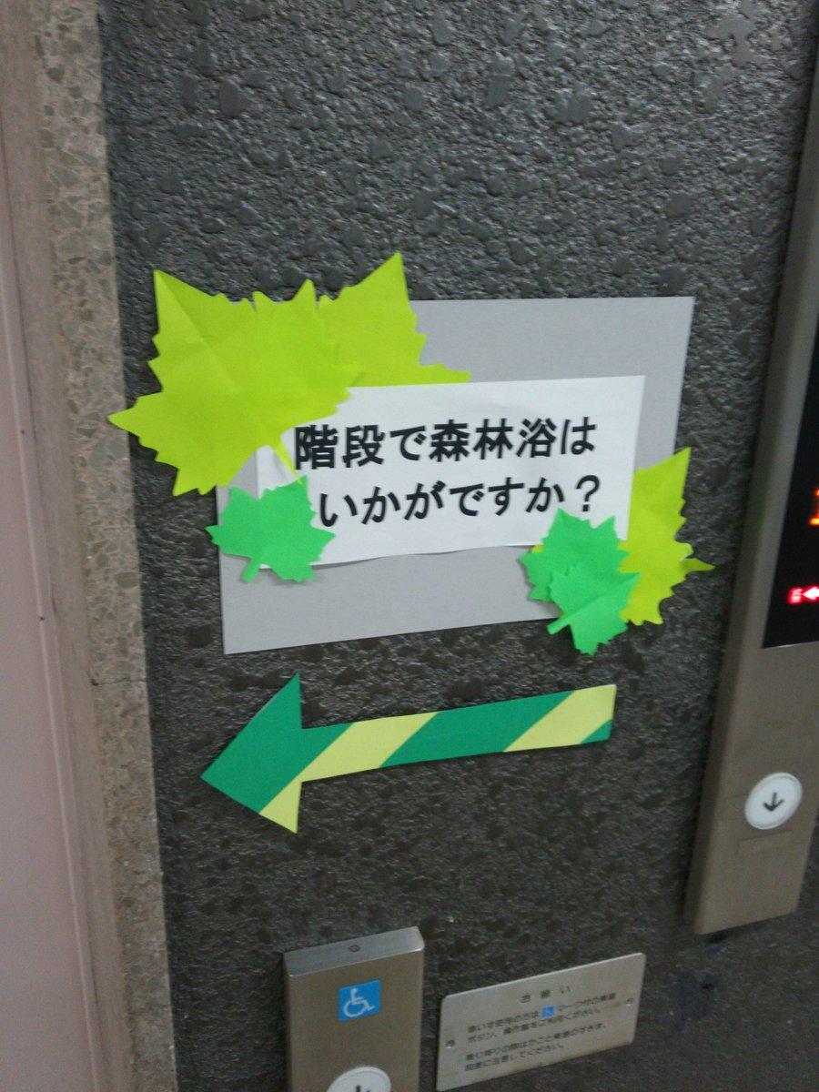 橋本 市 図書館