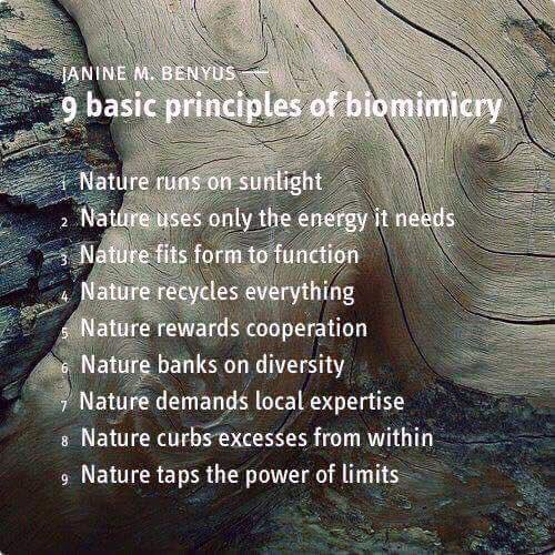 MT @BiomimicryInst: A future, mentored and inspired by nature! @JanineBenyus #SB16sd @SustainBrands #biomimicry https://t.co/eUsF8pfi5U