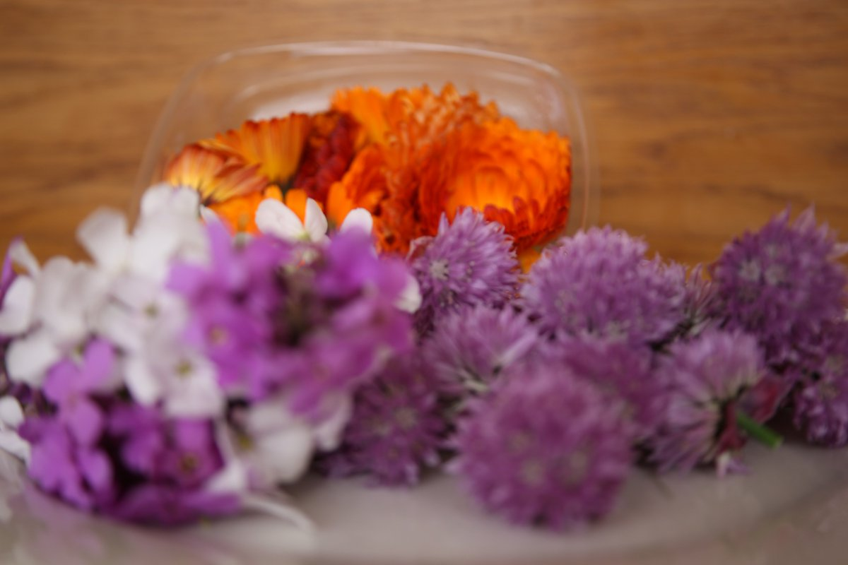 Fallon Byrne On Twitter Simply Beautiful Edible Flowers From