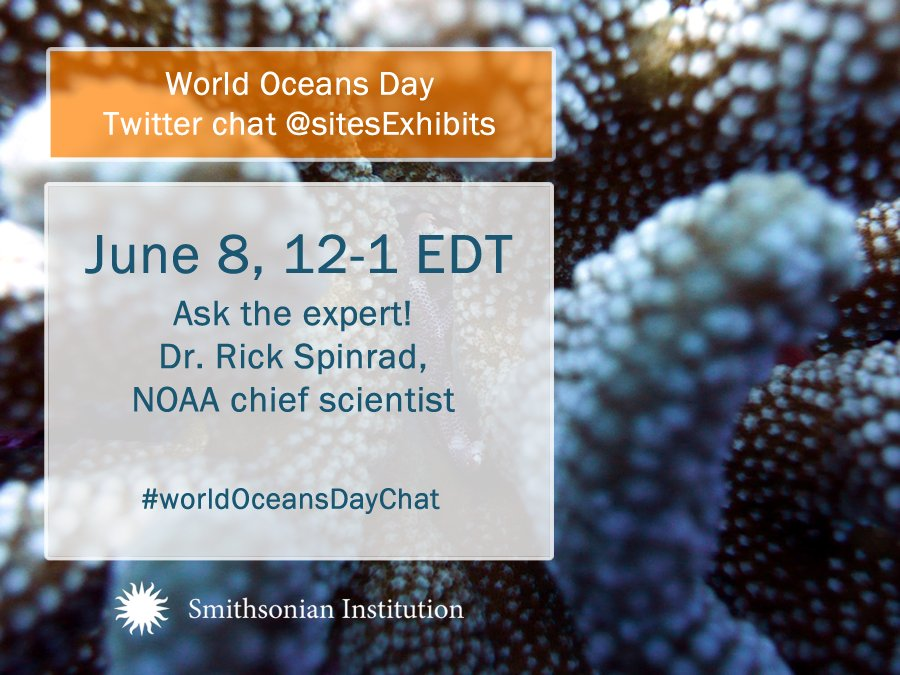 Thumbnail for #WorldOceansDayChat 2016
