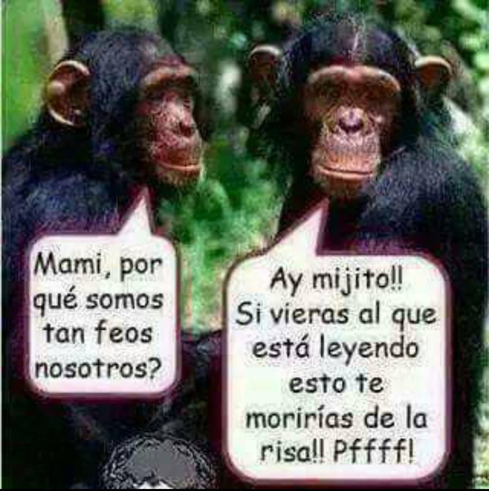 Emilio Gadea On Twitter El Humor Es Bueno Jajaja