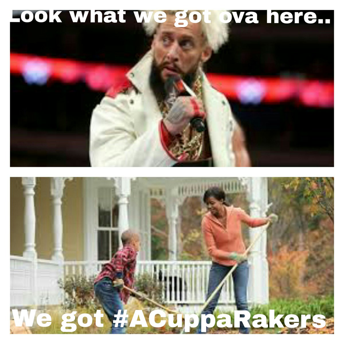 Funny Wrestling Pictures/Videos Thread | Page 6 | Wrestling Forum