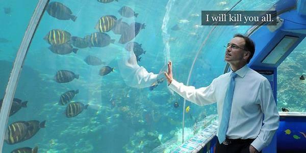 Ellen DeGeneres bombarded by Great Barrier Reef tweets from Australian minister