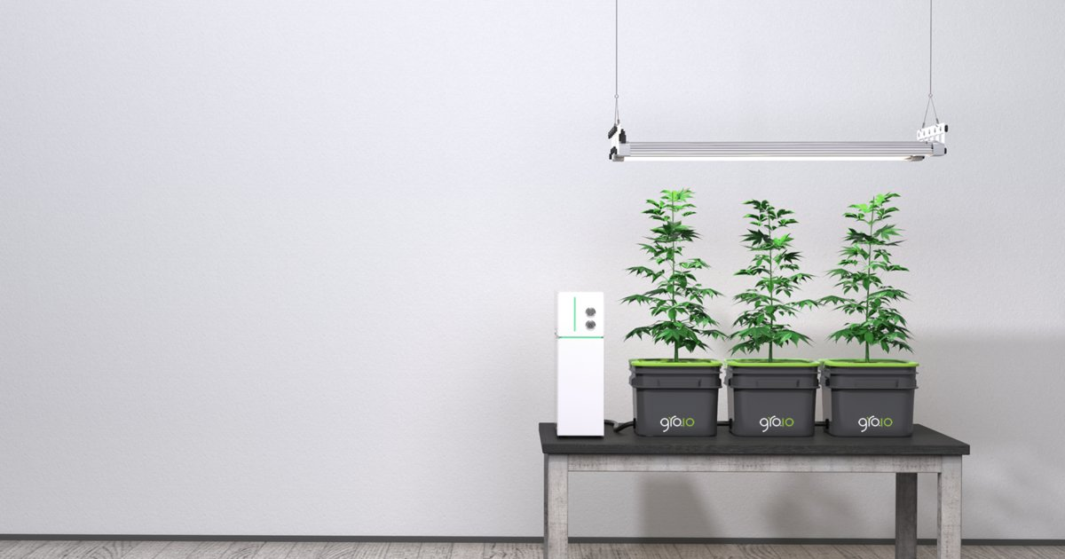 The Internet of Things is coming to your hydroponic garden