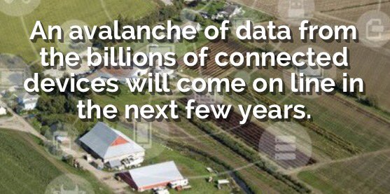 The Internet of Things: Implications for agriculture