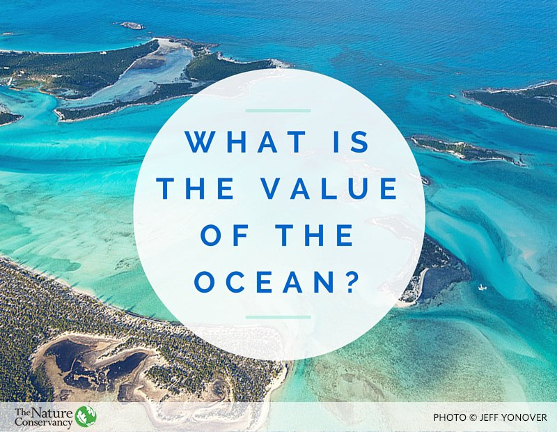 The ocean covers 70% of our planet and supports 100% of life of Earth. #WorldOceansDay