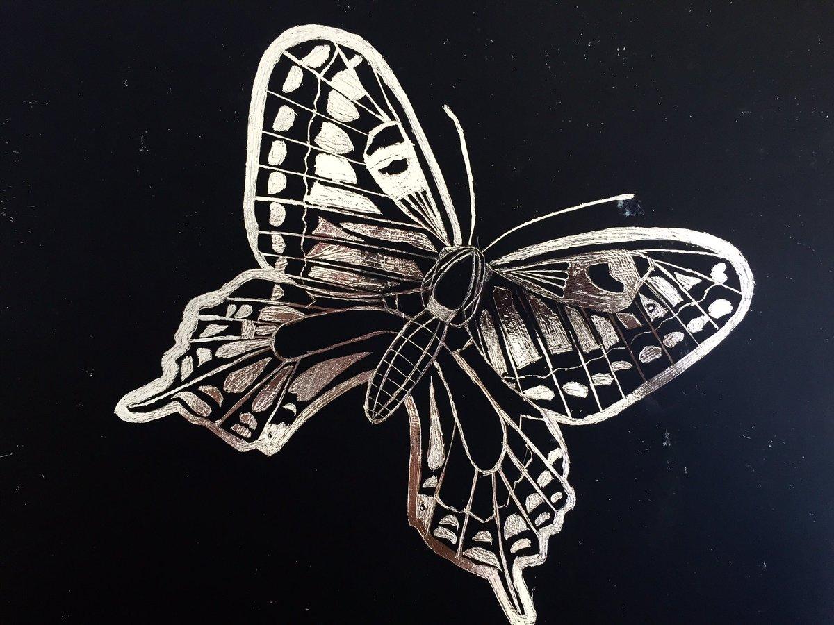 Kristine Emerson On Twitter More Great Gr 6 Reductive Art Rvis Bh Scratchart Silver Butterfly Giraffe Cat Eagle