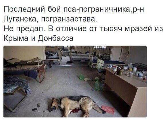Кабмин поддержал признание 26 февраля Днем сопротивления крымчан российской агрессии - Цензор.НЕТ 6960