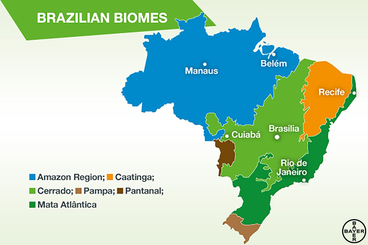 Bayer and The Nature Conservancy Brazil are joining forces ...