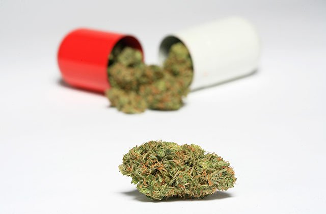 Medical Marijuana: One Issue Almost All of Us Agree on This Election Year